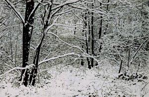Gr.Winterlandschaft_Farbholzschnitt 52,5x82cm