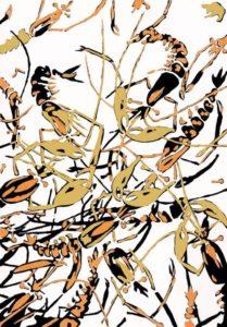 Krebse&Shrimps_Farbholzschnitt 29x20,5